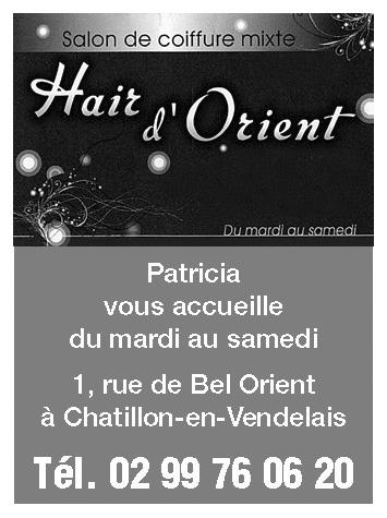 HAIR-ORIENT